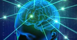 neuron-neural